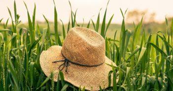 Le chapeau de paille, en tête des objets publicitaires de l'été